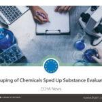 Gruppierung von Chemikalien beschleunigt Stoffbewertung